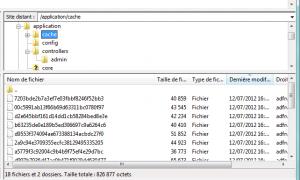 Liste des fichiers en cache generés par codeigniter